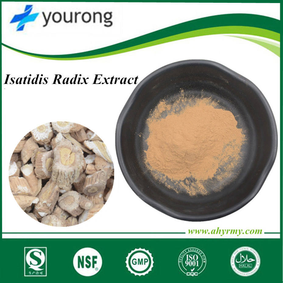 Ban lan gen 10:1 20:1 30:1 food grade radix isatidis extract ,essential amino acids for anti-bacterial indigowoad root