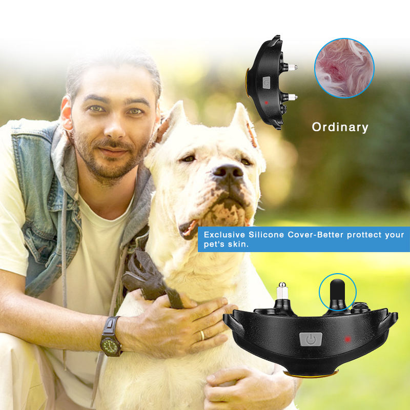 Personalized Designer Collar PATPET New Wholesale Customized Amazon Shock Vibration Rechargeable Remote Collars For Dog