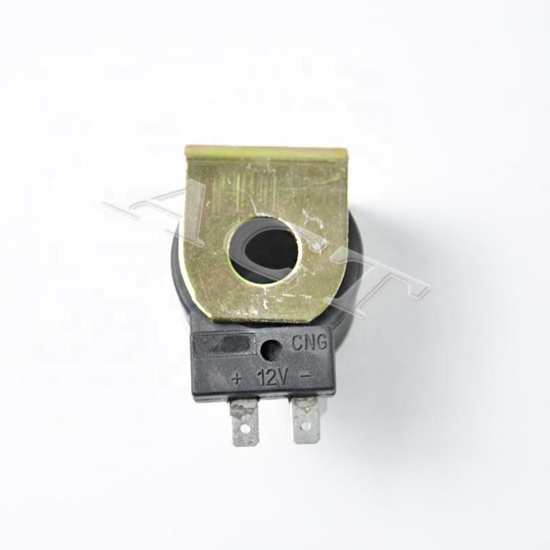 CNG Regulator ACT04 coil voltage regulator Reducer Solenoid valve Regulator solenoid coil