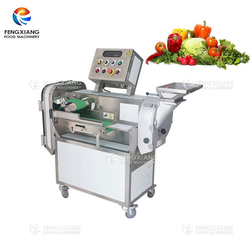 FC-301L Double-Head Automatic Fruit Vegetable Cutting Dicing Slicing Machine