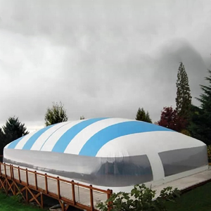 Kundenspezifische Transparente Aufblasbare Pool Kuppel