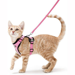 China custom adjustable pet cat leather chest harness for wholesale