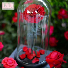 Led Rose Everlasting Glass Dome Preserved Perfect Ecuadorian Gift Set