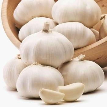 Factory provide 2020 best quality taste good garlic peeled garlic