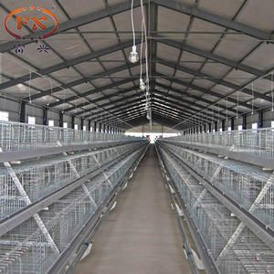 500 chicken egg layer and cage egg chicken cage layer a type layer chicken cage for bangladesh