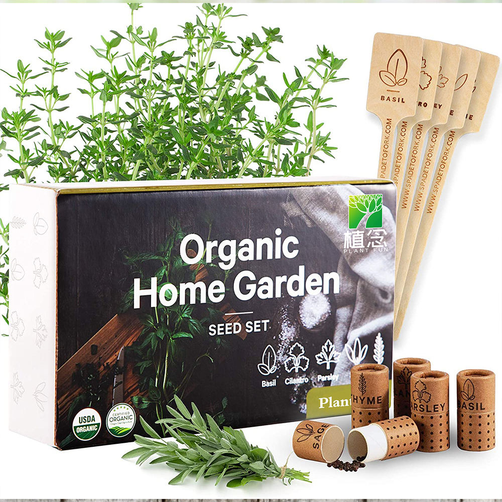 100% USDA Certified Organic Culinary Herb Seeds Collection 5 Variety Non GMO Basil Cilantro Parsley Sage Thyme growing kit