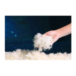 Low-priced wholesale European standard 30% pure white duck d