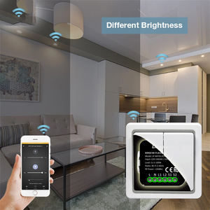 Luminans Mini 10A Alexa Controllo Vocale Tuya tec zigbee Smart Remote umidità temp Wifi Dimmer Modulo Switch 2 Gang