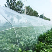 bulk garden insect netting for pest agricultural greenhouse bug net