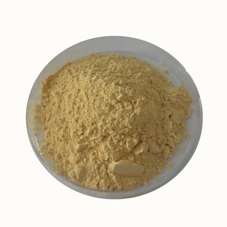Extracto de ginseng natural red_ginseng_extract <span class=keywords><strong>sol</strong></span> panax ginseng extracto total ginsenósidos