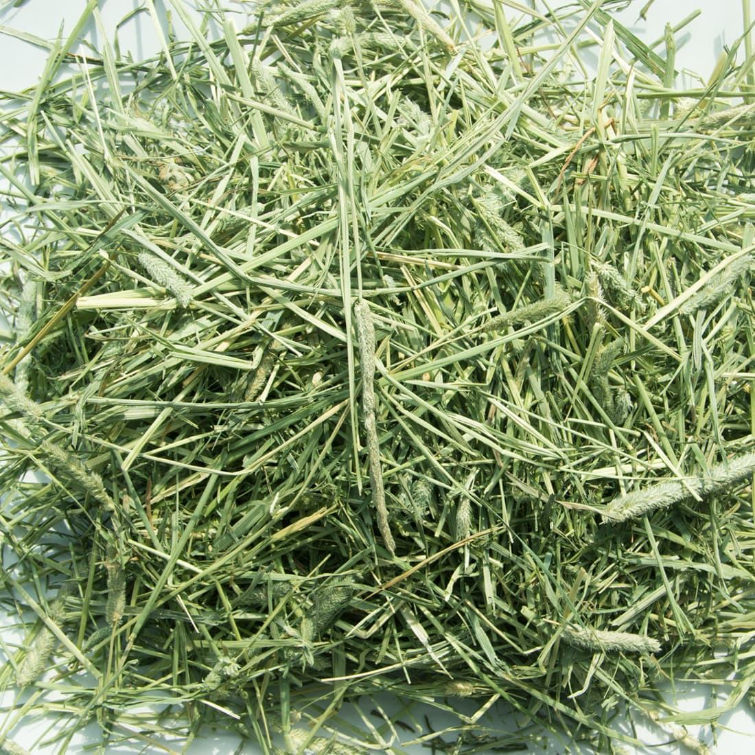 Competitive price Alfalfa Hay for Animal Feeding Stuff high vitamin Timothy hay food for wholesale