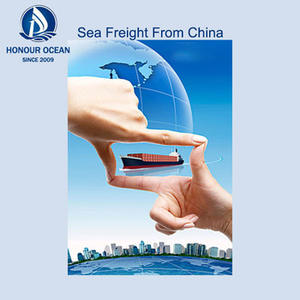 Professional logistics companies sea freight rates forwarder rates forwarders from shenzhen ddp china to india