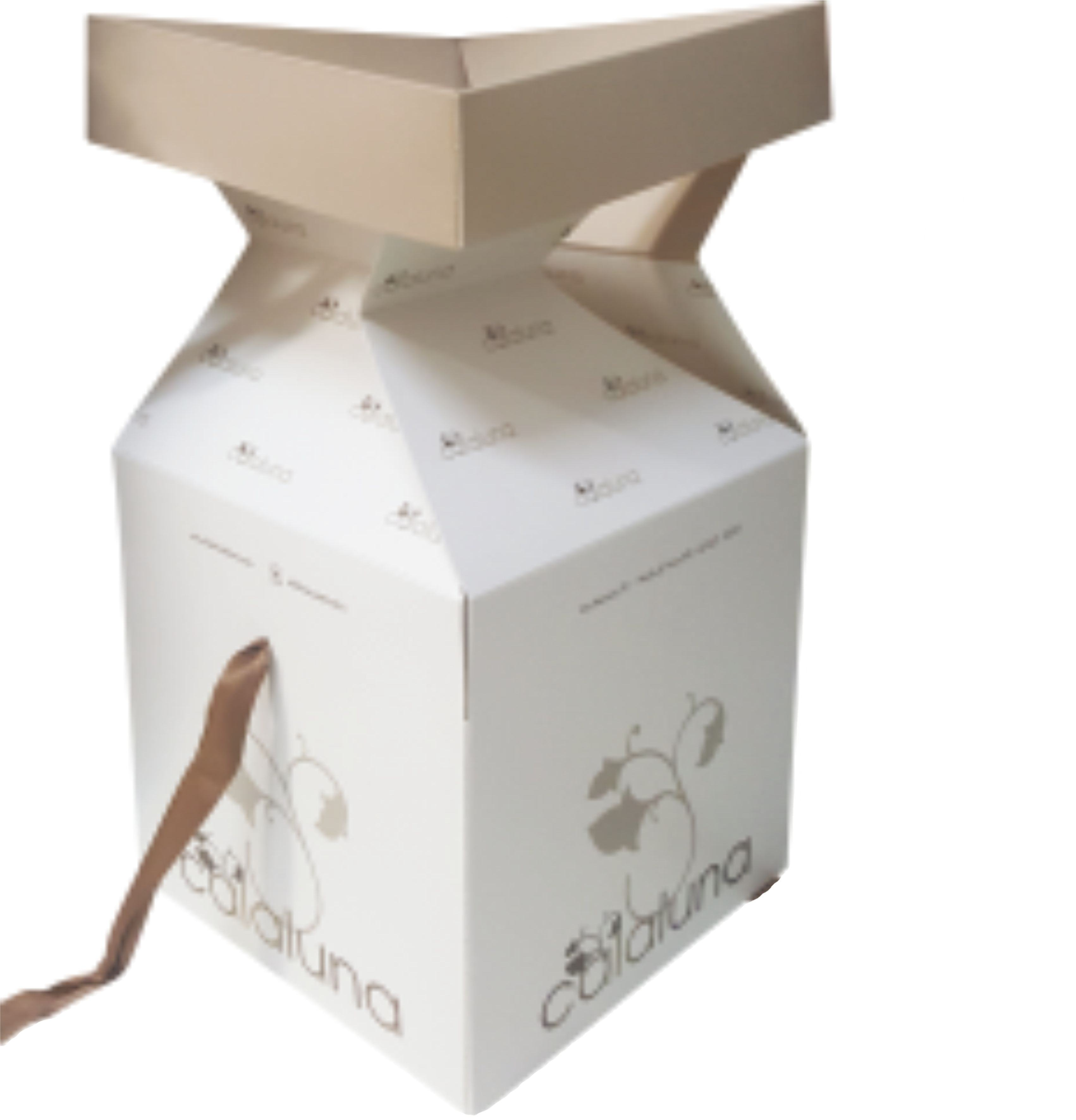 Paper Bags And Paper Boxes For Jewellery