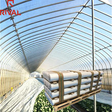 Plastic durable vegetable farm agricultural greenhouse film with PE material