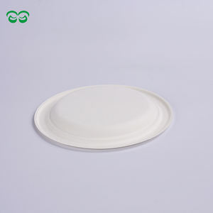 Biodegradable and Compostable Sugarcane Pulp 10 Inch Plate