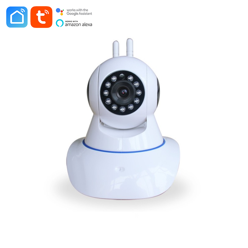 New wireless smart camera support 433 mhz can connect with wireless alarm sensor