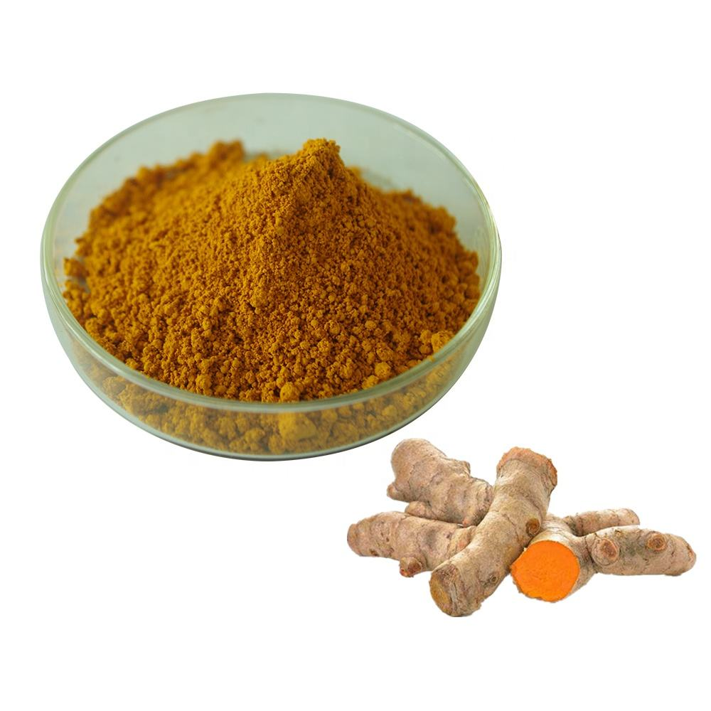 turmeric root powder extract curcumin 98% for healthcare supplement