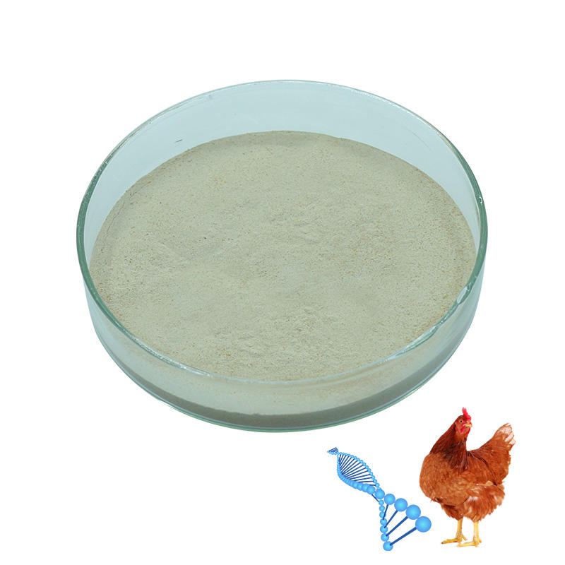 Feed Additive Poultry Toxin Binder