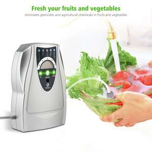 WSTA Home Used Ozone Generator Vegetable Fruit Water Sterisier Purifier Price