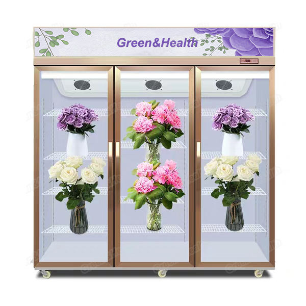 Keeping Fresh Cooler Flowers Shop Showcase Display Chiller