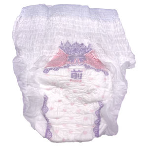Women Monthly Period Disposable menstruation panties for women overnight menstrual pants napkin
