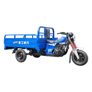 Low Price 150cc 3 Wheel Motorized China Cargo Tricycle With Roof