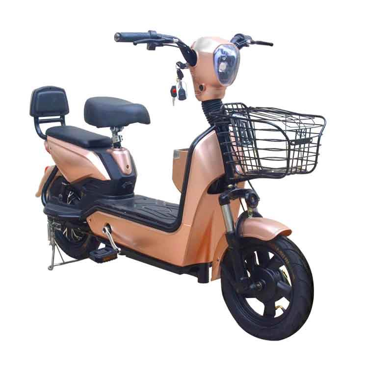 Host Sale China Cheap New Model Electric Bicycle Convenient Electric Bicycle Best Price IN CKD for sale
