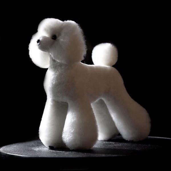Teddy bear mannequin Dog model grooming groomers grooming dog hair trimming practice 1 dog 1 coat