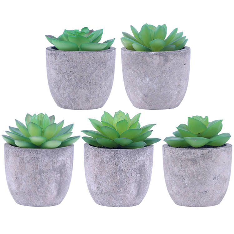 Artificial Succulent Plants Assorted Decorative Faux Succulent Potted Fake Cactus Cacti Plants with Gray Pots Set of 5