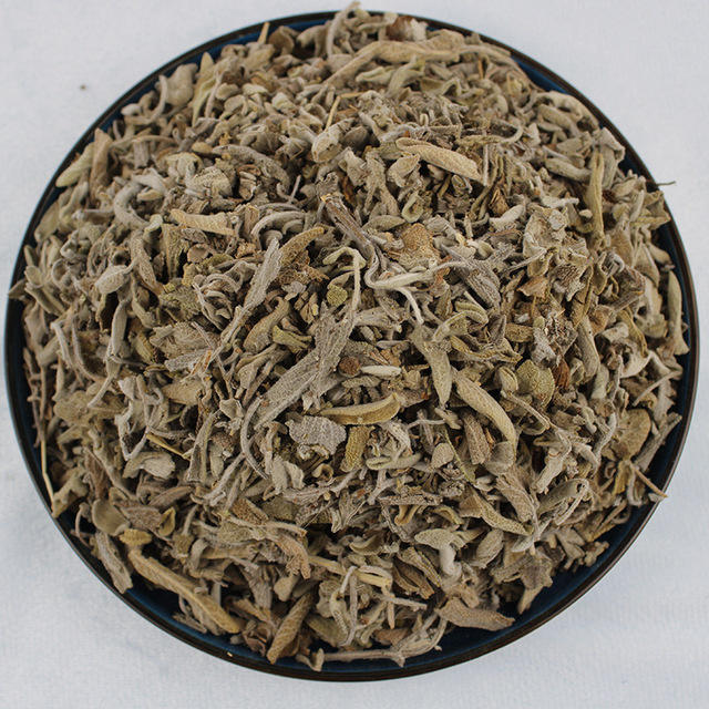 X010 Shu wei cao Supply chinese herb dried leaves sage salvia for spice