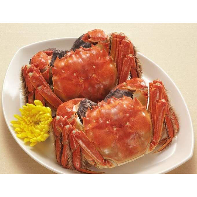 Chinese Mitten-Handed Crab(703)