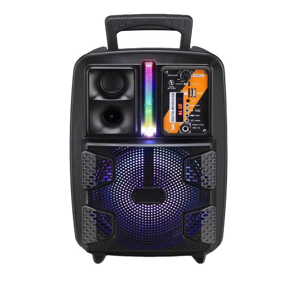 8 Inch Portable Style Active Speaker LED Wireless Amplifier DJ Speaker Box With Microphone