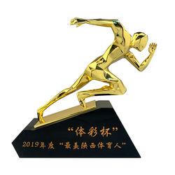 Custom sports trophy medals award