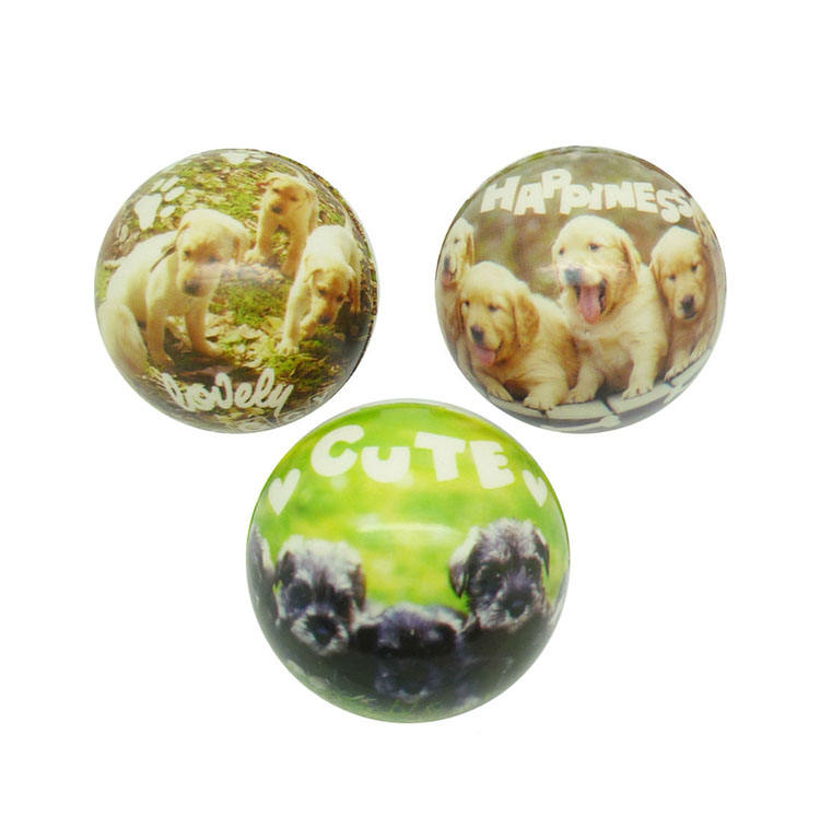Gift Novelty Small Capsules Bouncing Toys Animal Dog 50mm Plastic Full Printing PU Foam Puppy Balls for Vending Machines