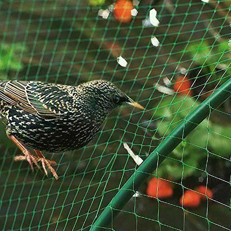 Customized Garden Tree Nets to Protect Fruit Garden Netting Plan Tree Fruit Bird Pond Mesh Garden Bird Net for Birds