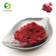 Dehydrated pulp pellets beet sugar root powder juice concentrate powder