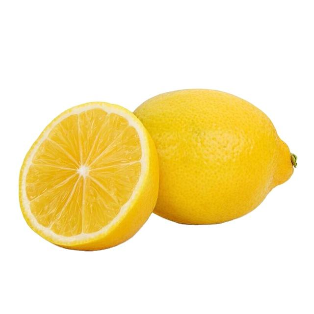 fresh lemon Eureka Lemon citrus fruits lemon