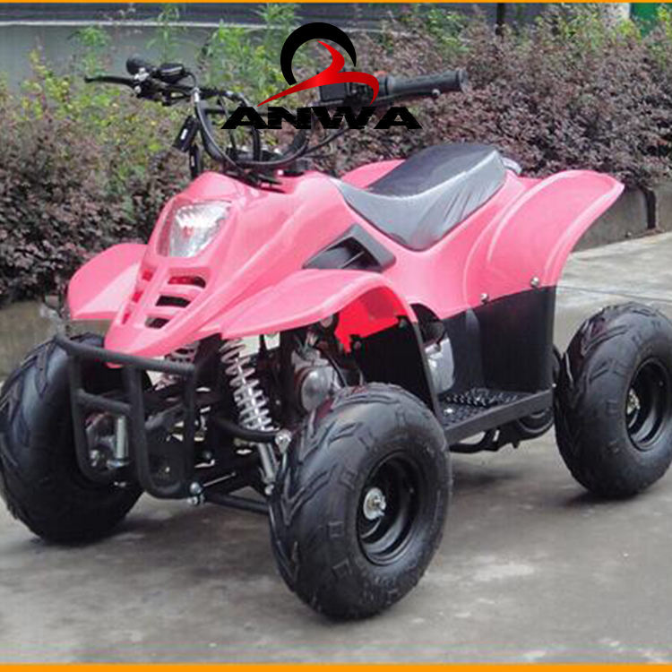 Mini ATV 110cc Auto Con Inversione di Quad Bike
