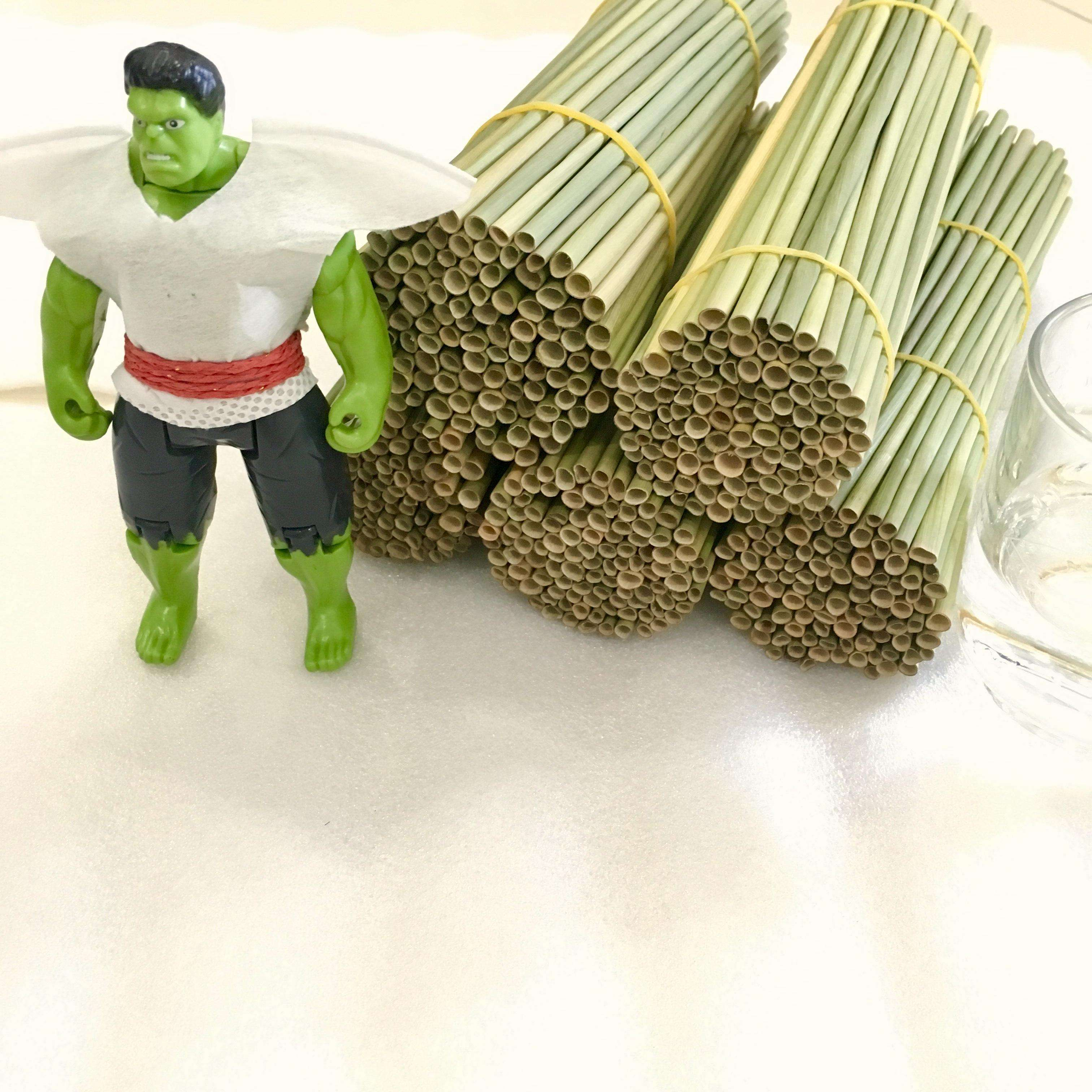 Eco- friendly Grass Drinking Straws Bio-degradable For Single Used Naturalstraws.vn
