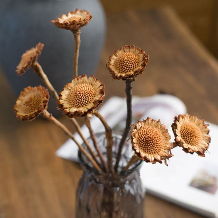 M068 DIY Wedding Decor Floral Supply Natural Dried Rustic Woodland Preserves Brown Sunflower Colored Dried Protea Exotic Flower