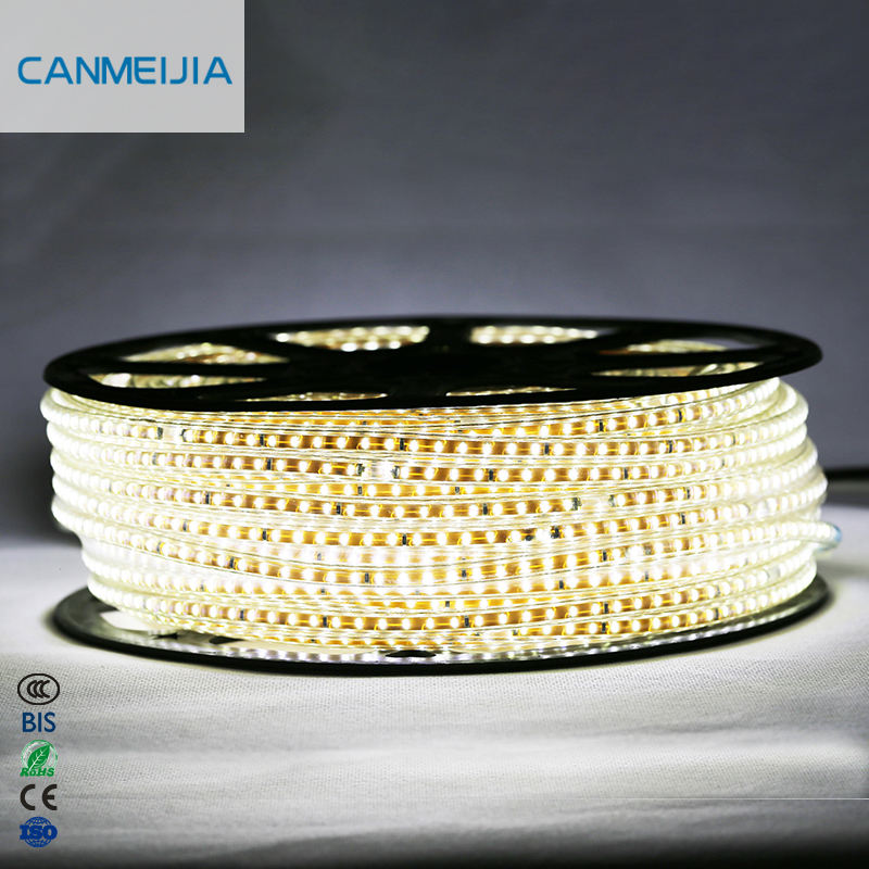 3014 220V White Warm White Blue Red 50M 5mm Led Strip Kit Width Chasing Ledstrip Lamp bed light Waterproof Colored Led Lights