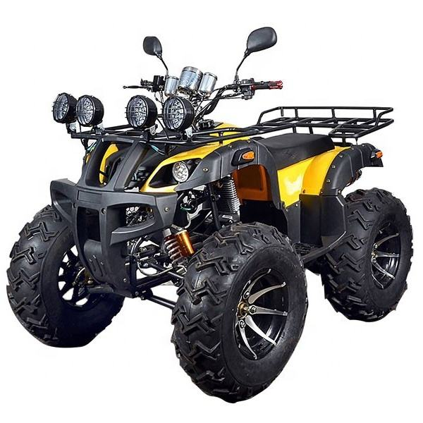 Petrol Powered Chain Drive Sport Hunting ATV 250CC Quad ATV for Adults