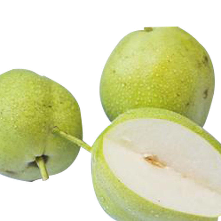 fresh pears fruit pears brand fruit fresh pear