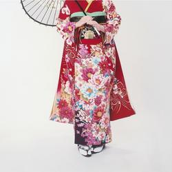 Japanese Kimono Furisode made in Japan