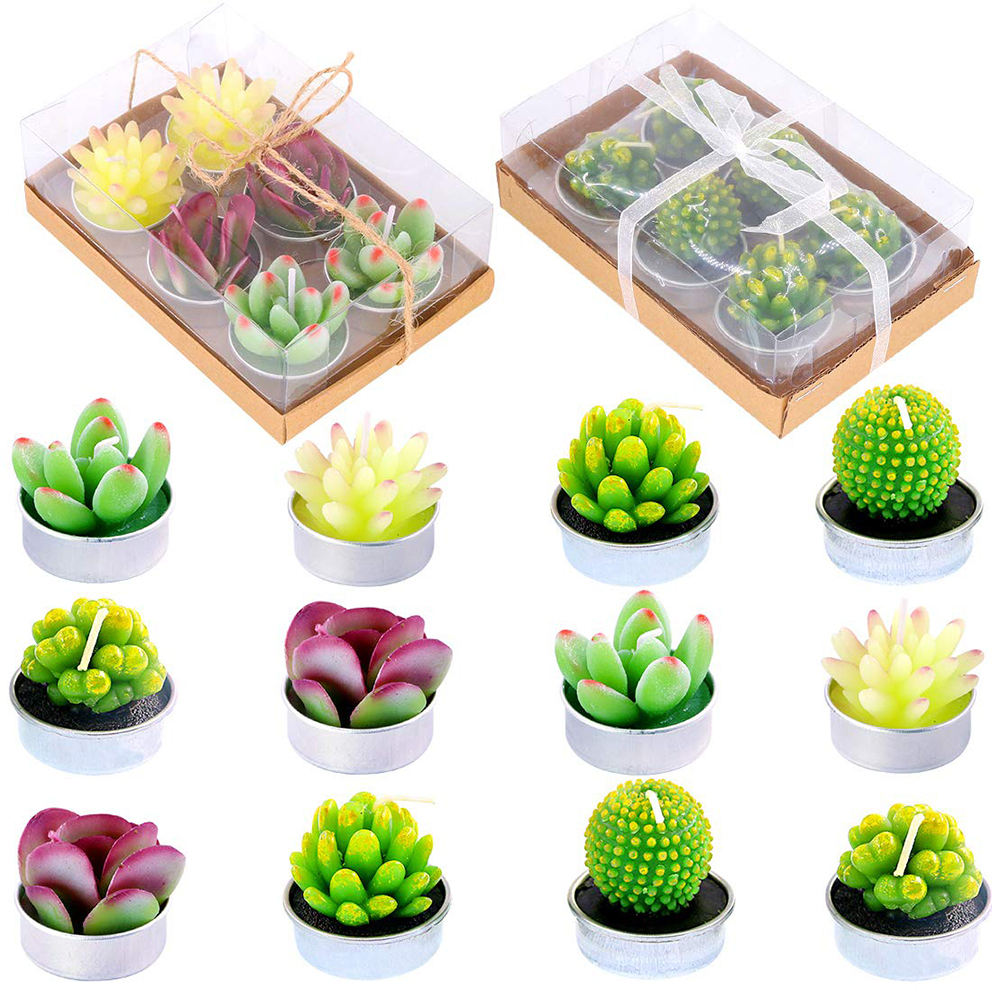2019 new Amazon eBay hot-selling luxury 12pc plant shape cactus scented candles gift set for decoration