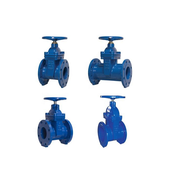 PN10 PN16 Ductile Cast Iron GGG50 Hand wheel Resilient Seated DIN Water Seal Gate Valve