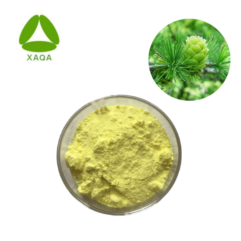 Siberian Natural Larch Extract 90% Dihydroquercetin Taxifolin powder price