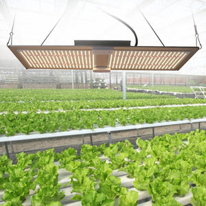 Led Sulight Full Spectrum Plant Lm301b 1000w 600w Lamp Bar Lights Indoor Redfarm Growth Strip 800w Board Grow Light