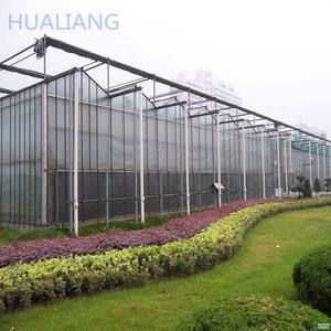 Professional Efficient Industrial Used Framed Glass Greenhouse