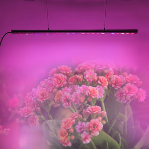 IP65 waterproof led aquarium light 3ft 40W horticulture plants led grow light